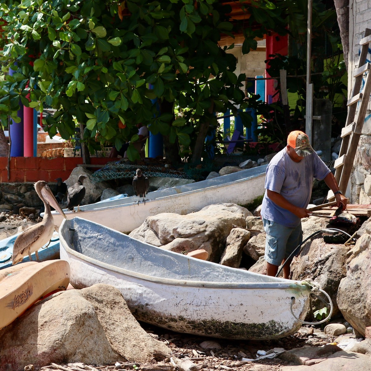 Un pêcheur à Yelapa