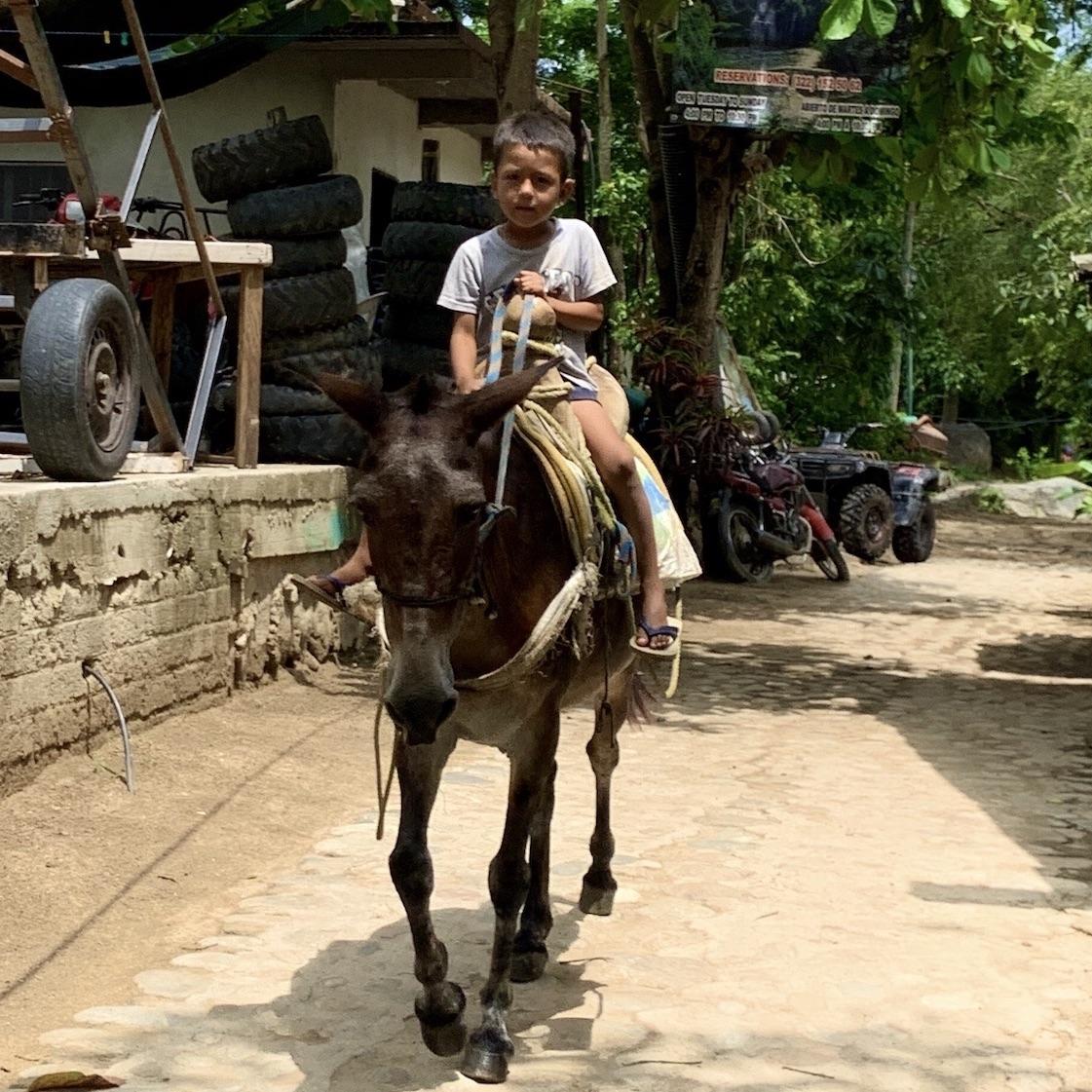un petit garçon sur un âne